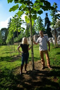 treeme-Wald-investition